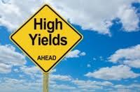 High yield invest options